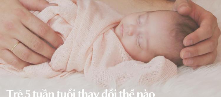 Trẻ 5 tuần tuổi