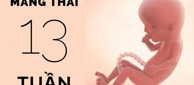 Thai 13 tuần