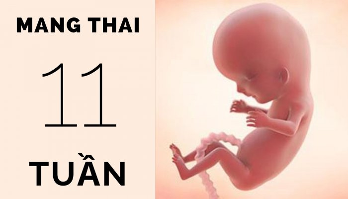 Thai 11