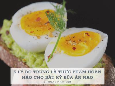 TRứng là thực phẩm hoàn hảo